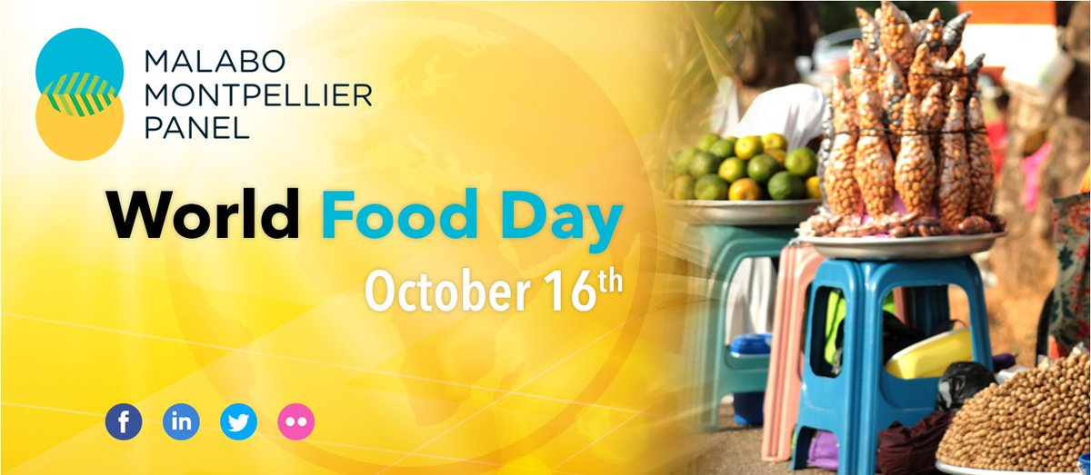 "test Twitter Media - "" The choices that families and farmers have regarding the food they consume and the crops they produce and sell at markets have a direct bearing on #nutrition outcomes"" #MaMoPanel #WorldFoodDay #worldfoodday2019 https://t.co/uLC8yKoqtt https://t.co/ZNOs3qenbp"