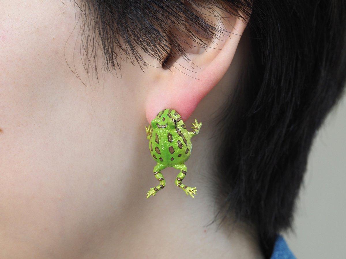 「耳かじって良いですか?」ベルツノガエルのイヤー噛む完成🐸✨いきものフェスでお披露目です!!#いきものフェス #イヤーカフ