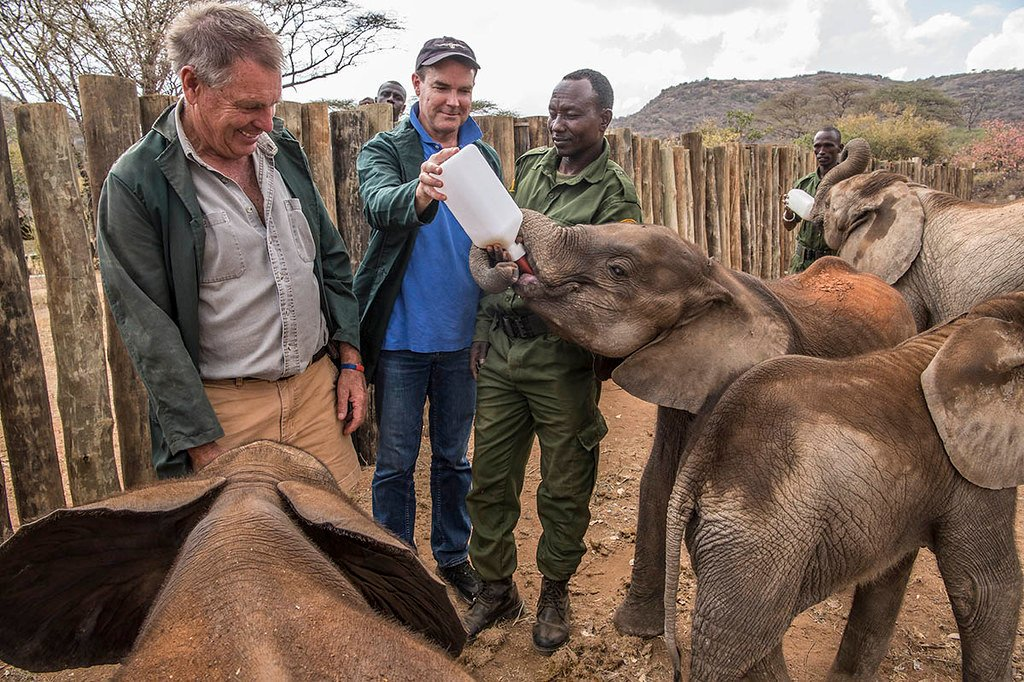 "@JohnEScanlon of @AfricanParks, former Sec Gen of CITES: ""Personally, I'd like to see more focus on protecting #wildlife wildlife at source, so that it never enters the illegal trade in the first place"" Exactly!  An interesting interview...  #IWT #protectedareas"