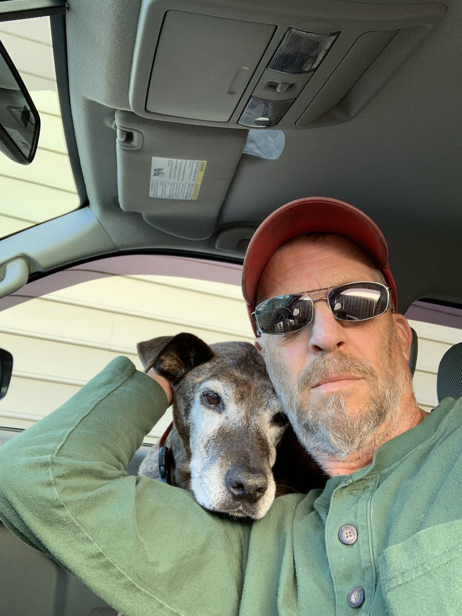 Diesel last and first Trippin  It was his kidneys.  And that's all I have to say about that.             Life on life's terms  6 April 2004 - 9 October 2019  #GrayFaceMafia #DogsofTwittter #RecoveryPosse #ODAAT<br>http://pic.twitter.com/dAdKFF7CjY