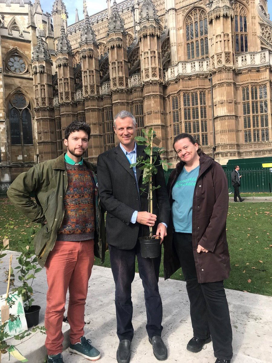 Thank you @ExtinctionR for this beautiful oak tree. Planting & protecting trees here & overseas - on a much, much bigger scale is a critically important part of tackling the environment and climate crisis. #ReforestEarth