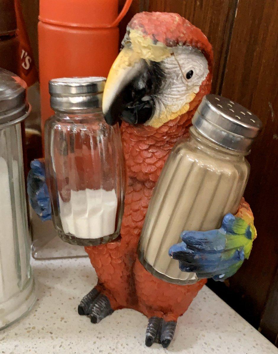 Salt /& Pepper Shakers African Grey Birds