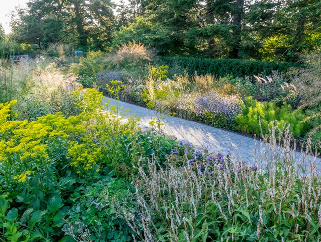 Gardendesign Tip Don T Fear Tall