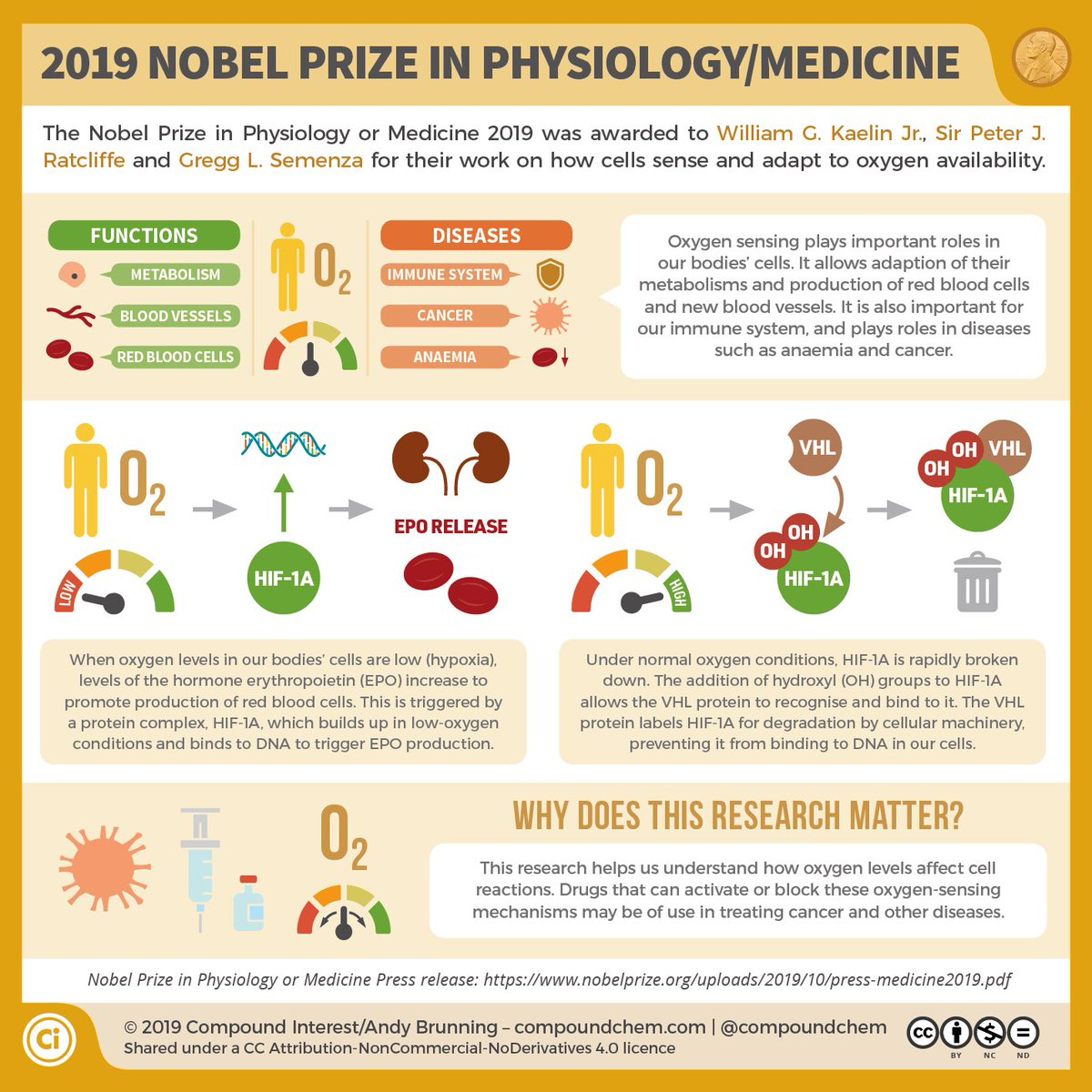 The science Nobel Prizes are over for another year 🏅 Here are graphic explainers for each of this year's winners #nobelprize