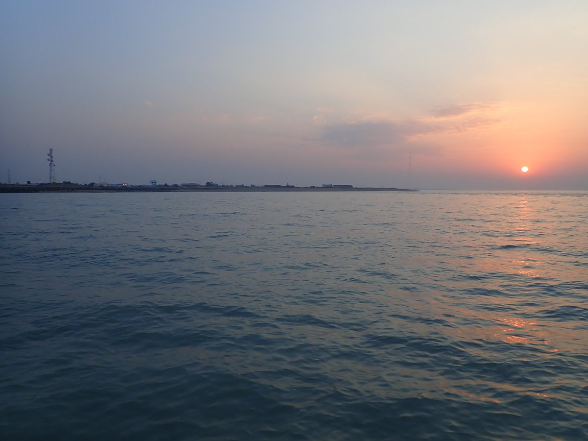Museum researcher Dr Sammy De Grave is conducting fieldwork in the Gulf. He's surveying the local shrimp population (& even found a new shrimp record for the area!) Here's some of his personal snaps from Failaka Island: combing beaches, lifting rocks, early starts & sunsets