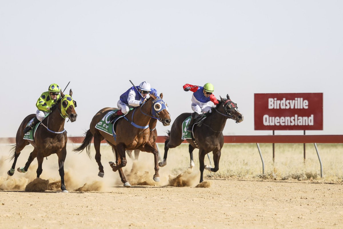Birdsville cup betting trends football betting sites that accept naira to dollar