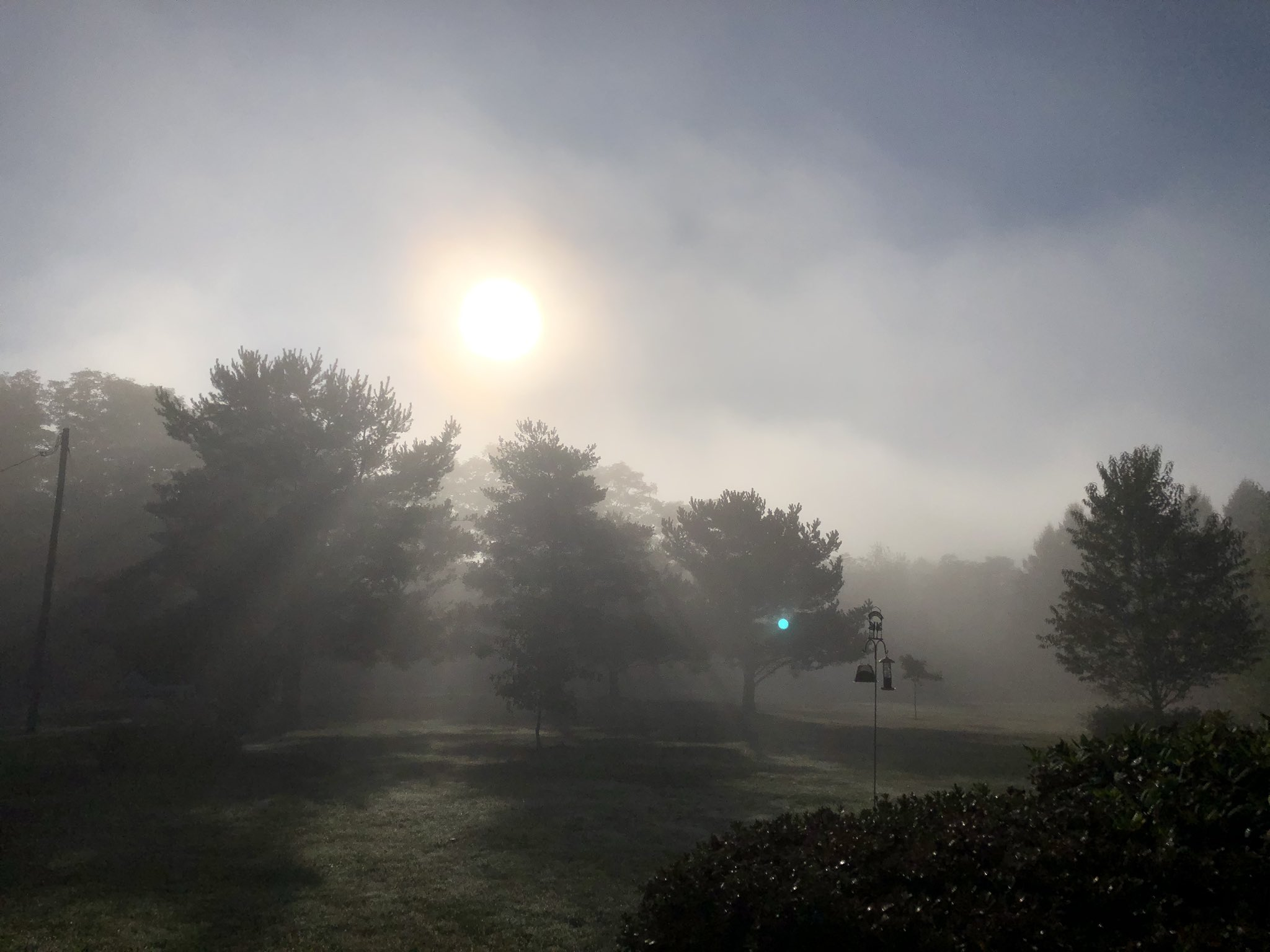Foggy start (photo)