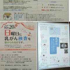 人間ドックで骨密度を計測し、若者より多い❗嬉しい<br /> 乳がんも検診。なんと!10月20日は、日曜日に乳がん検診ができる日<br /> 10月は、乳がんの啓発月間(ピンクリボン月間)<br /> 皆さん、乳がん検診を受けましょう全国の第3日曜日のがん検診は、こちら▼</p> <p>http://jms-pinkribbon.com/</p> <p>我が家の椿の花が咲き始め?