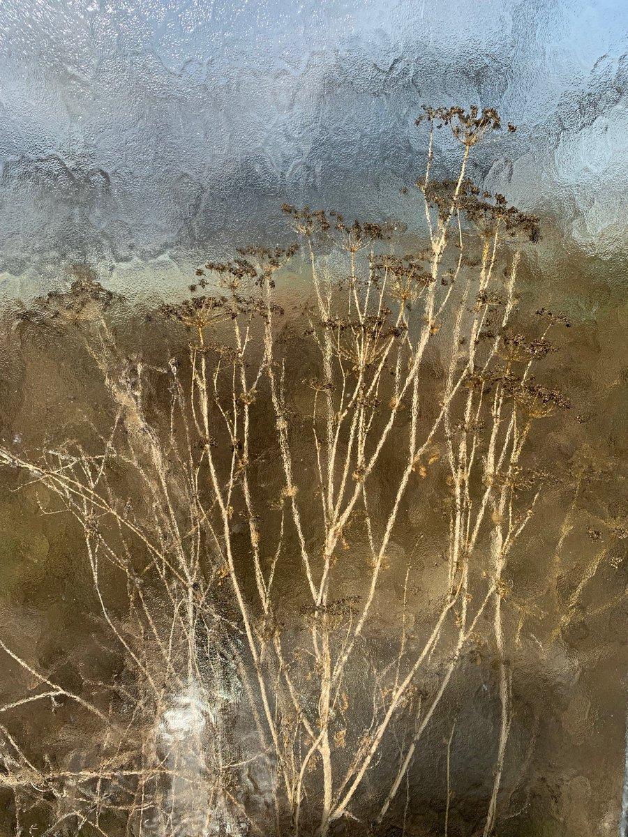 Paysagiste Nantes Avis moss paysage (@mosspaysage)   twitter
