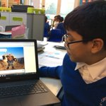 Image for the Tweet beginning: Indigo Class have been learning