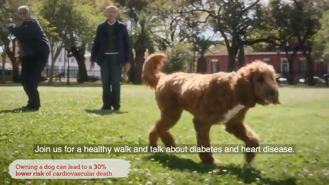 Everyone knows dogs are great for heart health. Cardiologists Dr. Javed Butler and Dr. Keith Ferdinand take their four-legged friend, Maggie, on a walk around NOLA to discuss the importance of collaboration in diabetes treatment.
