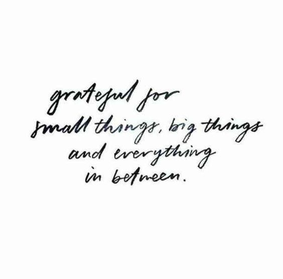 Allll of the #ThankfulThursday vibes today. Let us know below what you're grateful for today... <br>http://pic.twitter.com/s8m7MlO5kj