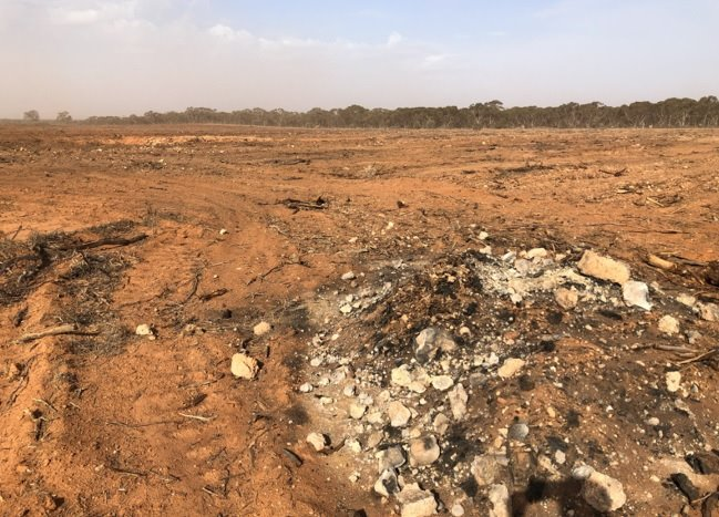 Land-clearing still progressing in NSW, with large areas of mallee being knocked down and burnt. An area next door to Mallee Cliffs NP where bilbies were recently released. #auspol #nswpol #ClimateChange #ExtinctionRebellion #ecocide @GladysB @NSWPlanning