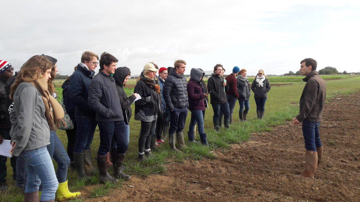 Et nous terminons la semaine terrain au Pôle Agronomique d'Estrées-Mons @terresinovia @ProjetSyppre, #SolsVerts, @AgroTransfertRT #AgriSmart @yncrea_hdf @ISA_Lille #Agriculture #Bio #Integrée #Conservation #Bioéconomie #ICLS