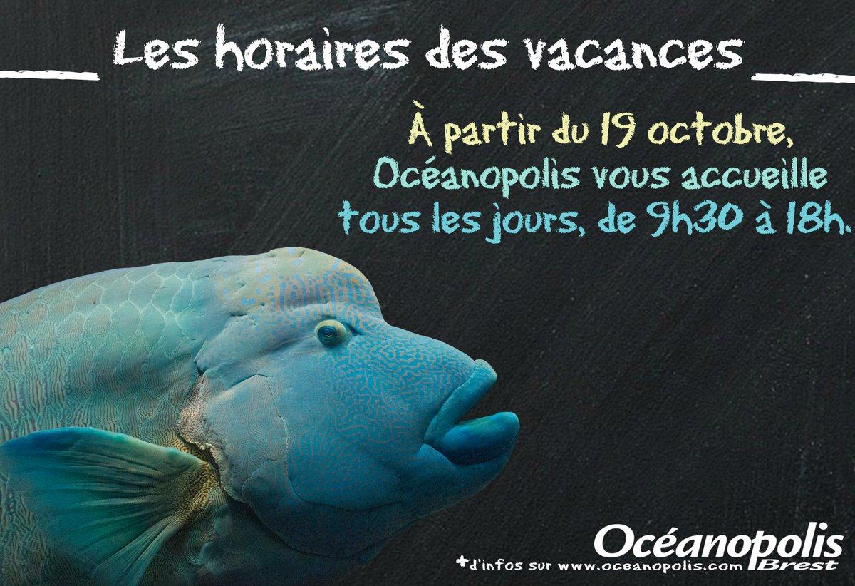 #ChangementdHoraires | ⏰ Pendant les vacances, du 19 octobre au 3 novembre, @Oceanopolis_ #Brest vous accueille tous les jours de 9h30 à 18h 😉