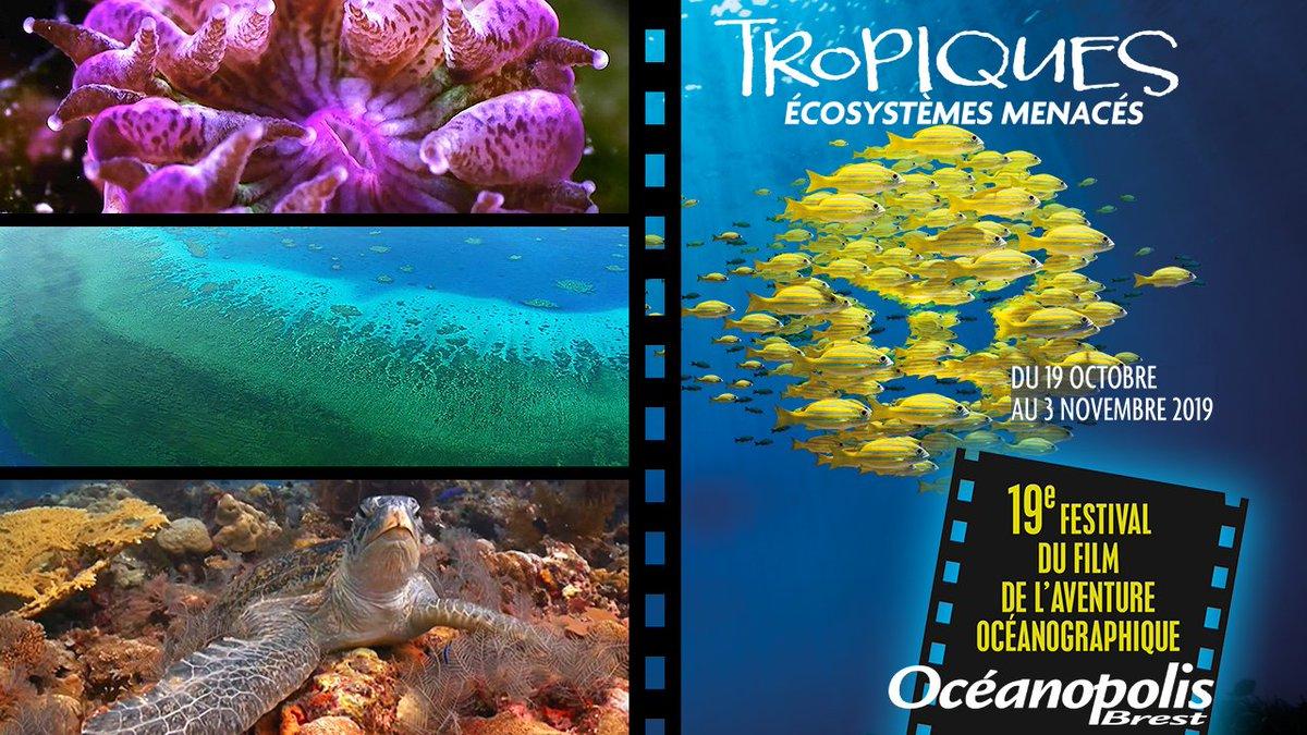 🎬 | Le Festival du Film de l'Aventure Océanographique ouvre ses portes aujourd'hui à @Oceanopolis_ ! #FFAO2019 👉 Parcours complet pour découvrir les environnements tropicaux de manière inédite. Projections, animations, conférences, expositions… ➕ oceanopolis.com/festival-du-fi…