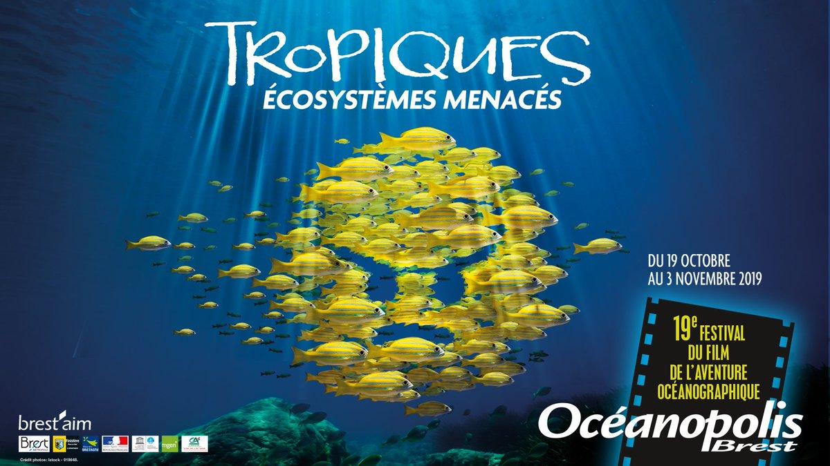 🎬 | Demandez le programme ! Découvrez toutes les projections, animations, rencontres et expositions du festival du film à @Oceanopolis_ #Brest. 👉 fr.calameo.com/read/004315606…