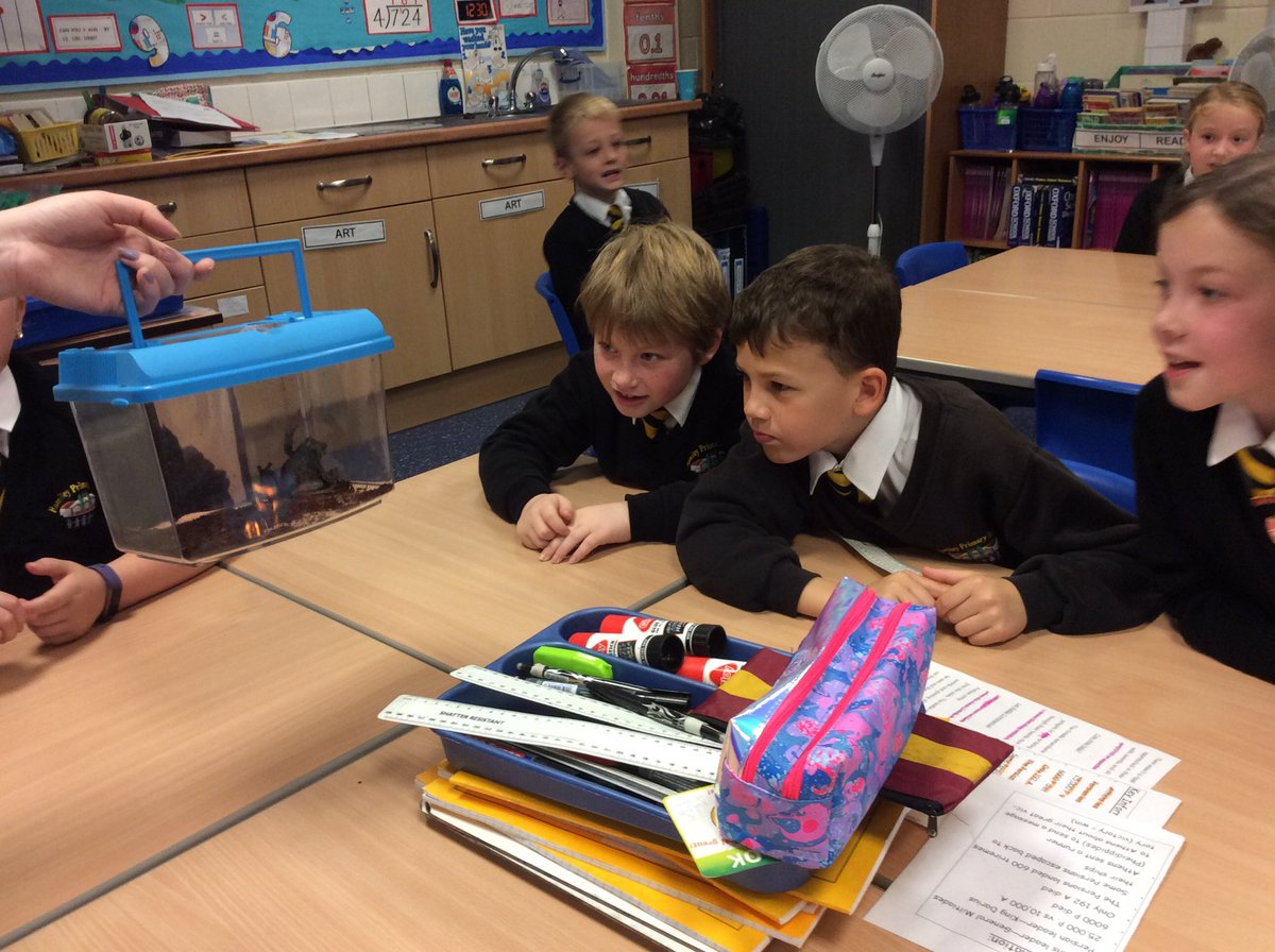 test Twitter Media - @RomileyPS Year 4 have had a visit from a tarantula, giant snail, snake and other exotic animals!!! What a fantastic experience. Thank you @ZooLabUK for a fascinating morning 🐌🕷🐍🐸👍 https://t.co/RJgznTt2bH