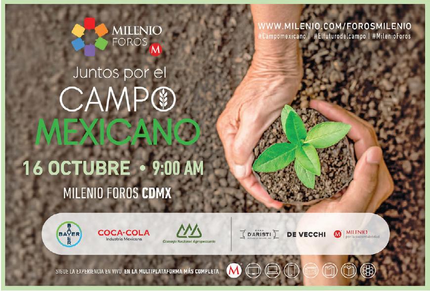 #MilenioForos | ¿Cuáles son los retos más importantes del #CampoMexicano? Descúbrelo el próximo 16 de octubre a las 9:00 h por la multiplataforma de @Milenio donde especialistas debatirán acerca del #FuturoDelCampo http://mile.io/2ASJhaG