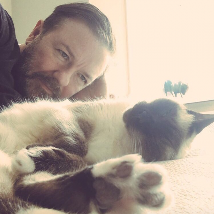 Thanks for voting for #AfterLife from all over the world. And thanks even more for always supporting the animal welfare stuff I bother you with. surveymechanics.com/s/TVTAwards