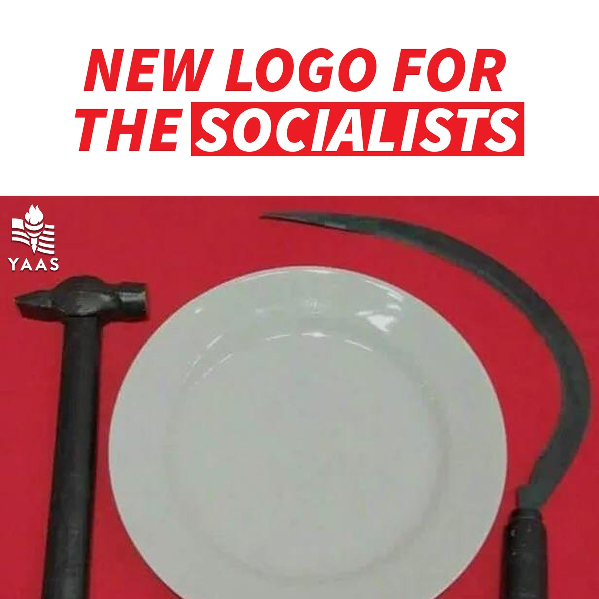 This is perfection. Socialism and empty plates go hand-in-hand.