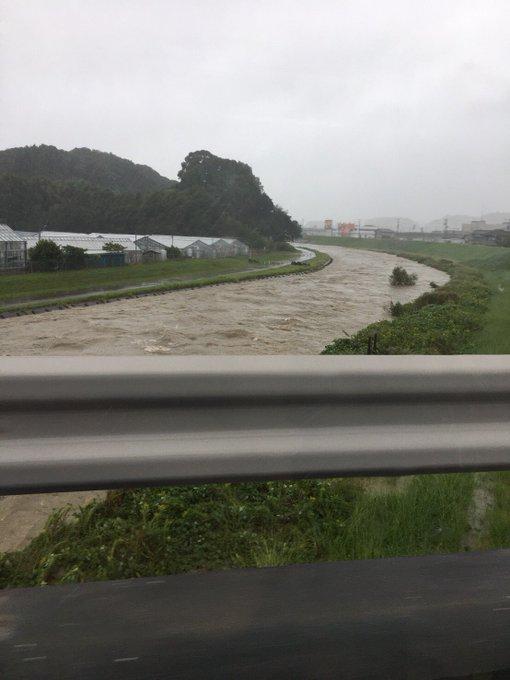 氾濫 菊川