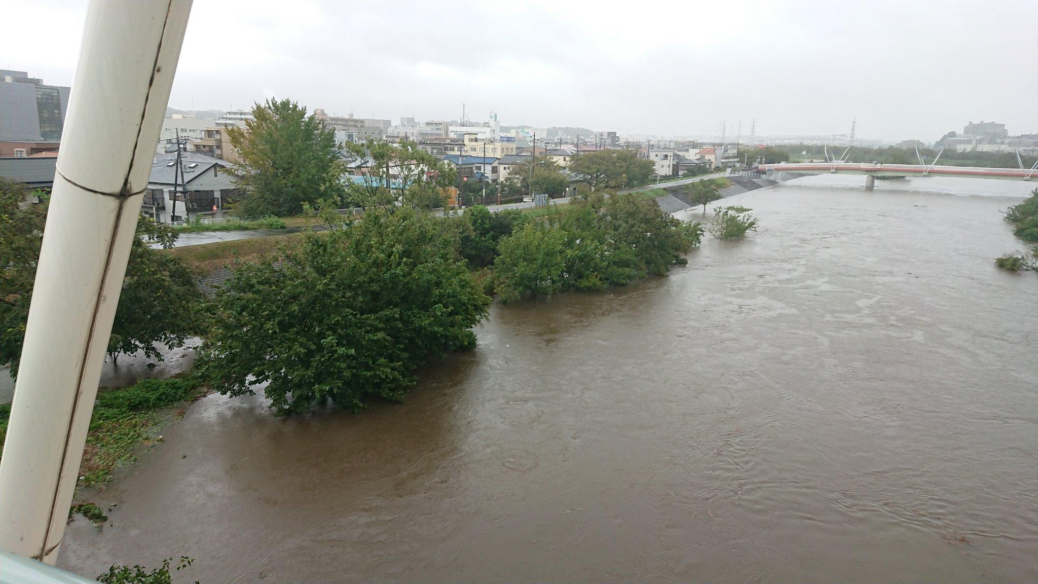 水位 鶴見 川