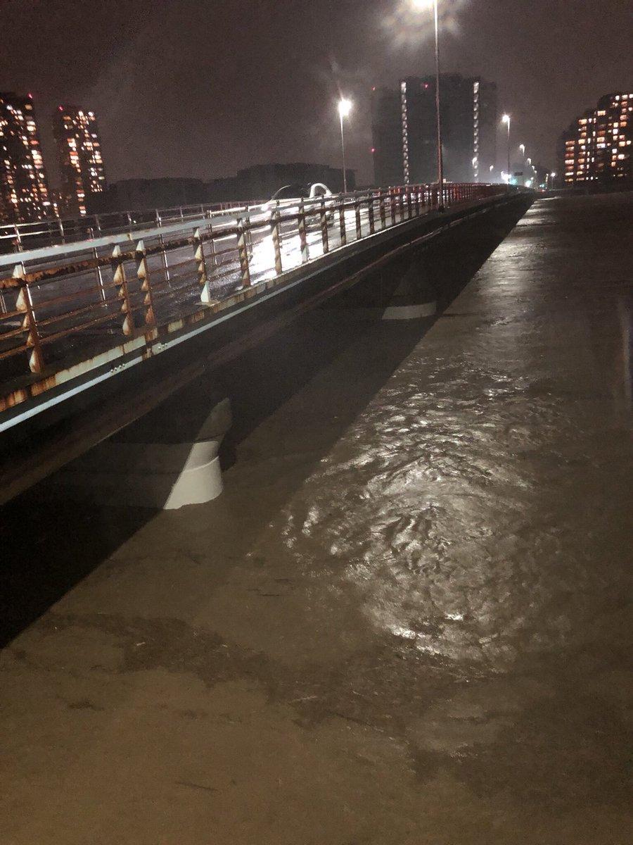 浅川圏域、大栗川及び三沢川流域浸水予想 ...