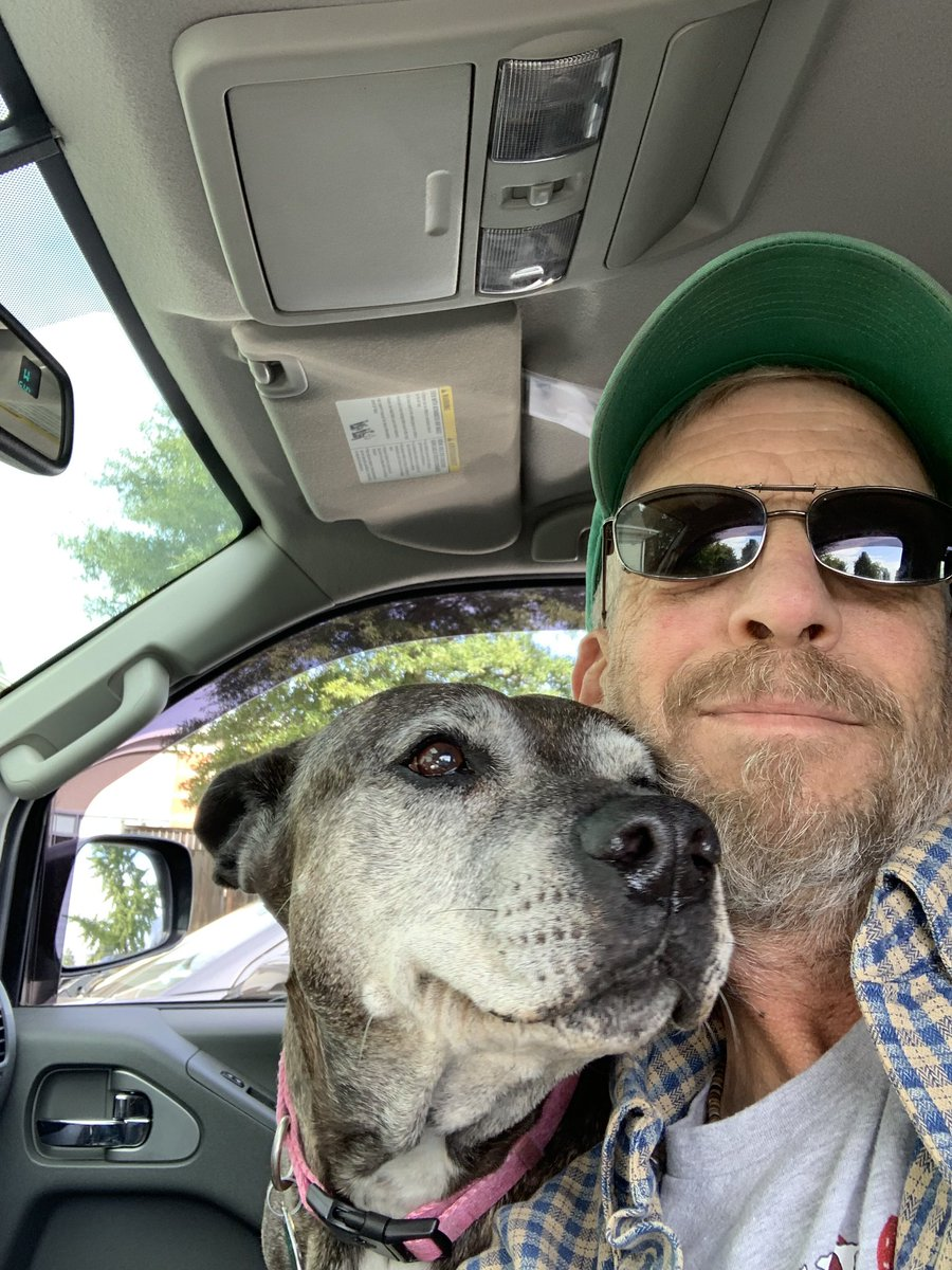 Shenna Trippin Saturday!!  Off to the vets without a care in the world thanks to everybody!!  #GrayFaceMafia #DogsofTwittter #seniorpupsaturday #rescuedog<br>http://pic.twitter.com/xcCPQ2FB65