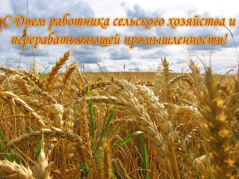 День сельского работника открытка