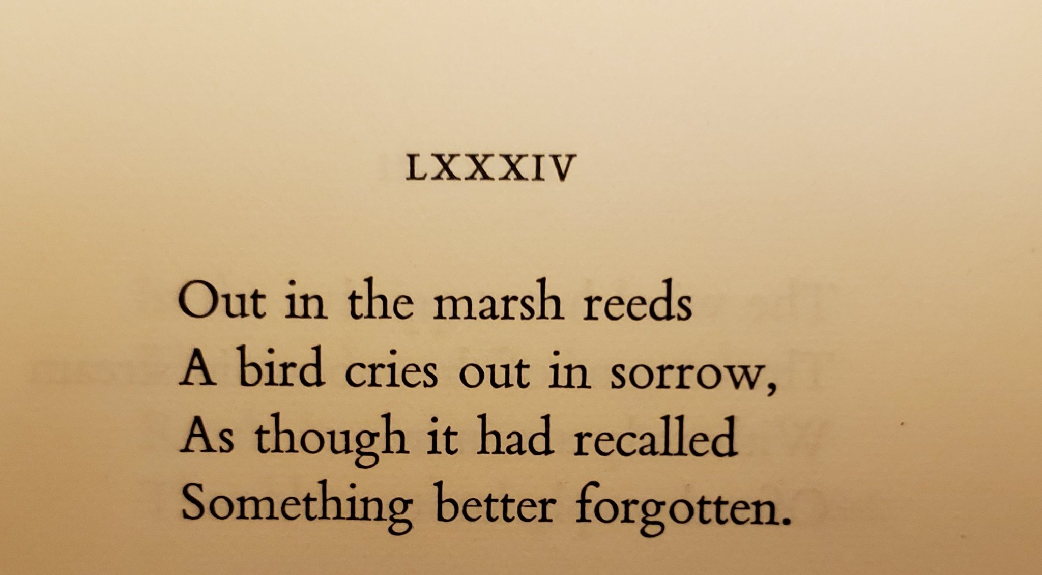 """Michel Lara on Twitter: """"In this evocative poem, the unseen ..."""