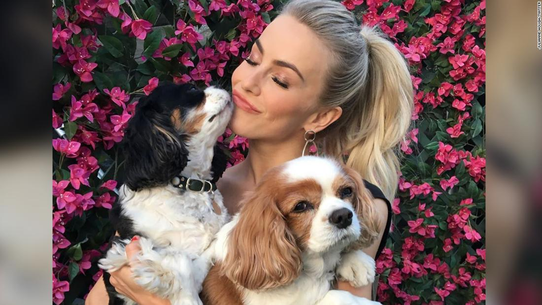 Julianne Hough mourns the death of her two dogs in a touching Instagram tribute - Top Tweets Photo