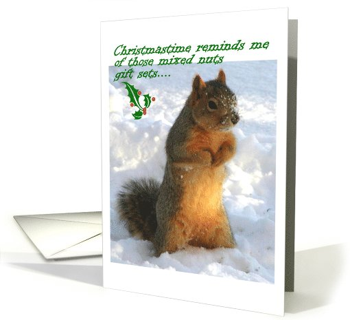 #Christmastime Squirrel card #Funny http://greetingcarduniverse.com/holiday-cards/christmas-cards/animals-pets/rabbits-rodents/christmas-squirrel-in-snow-717517?gcu=44899290132… @gcuniverse #christmascards #greetingcards #holidaycards #funnygreetingcards #GreetingCardUniverse #AnyCardImaginable #eviesartfulcardshop #christmassquirrel #squirrelphoto pic.twitter.com/AooDUQjycW