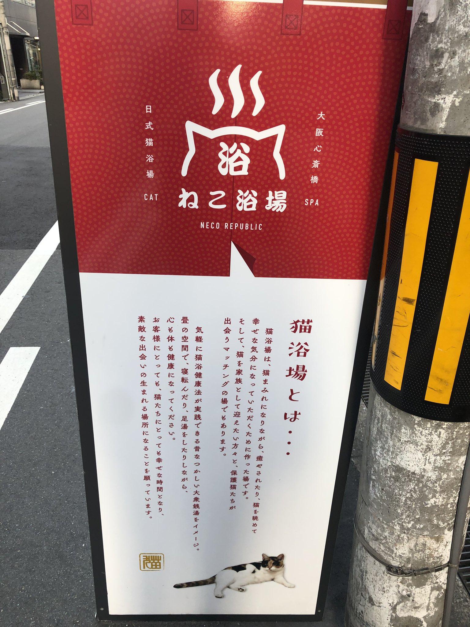 猫好きにはたまらない!大阪・心斎橋にオープンした新感覚猫カフェ『ねこ浴場』