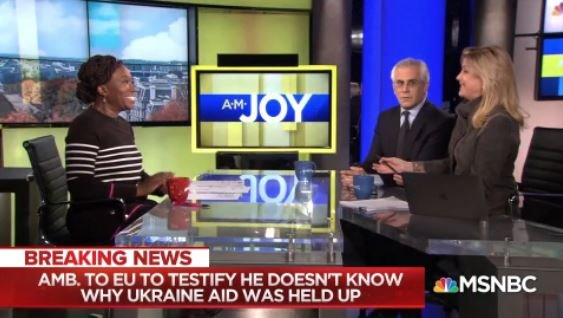 .@CynthiaAlksne: Let me say this about conspiracies having tried a bunch of these cases. The more people that are in the conspiracy, and the more people with big mouths and big egos, the less likely it is to stay hidden. #AMJoy