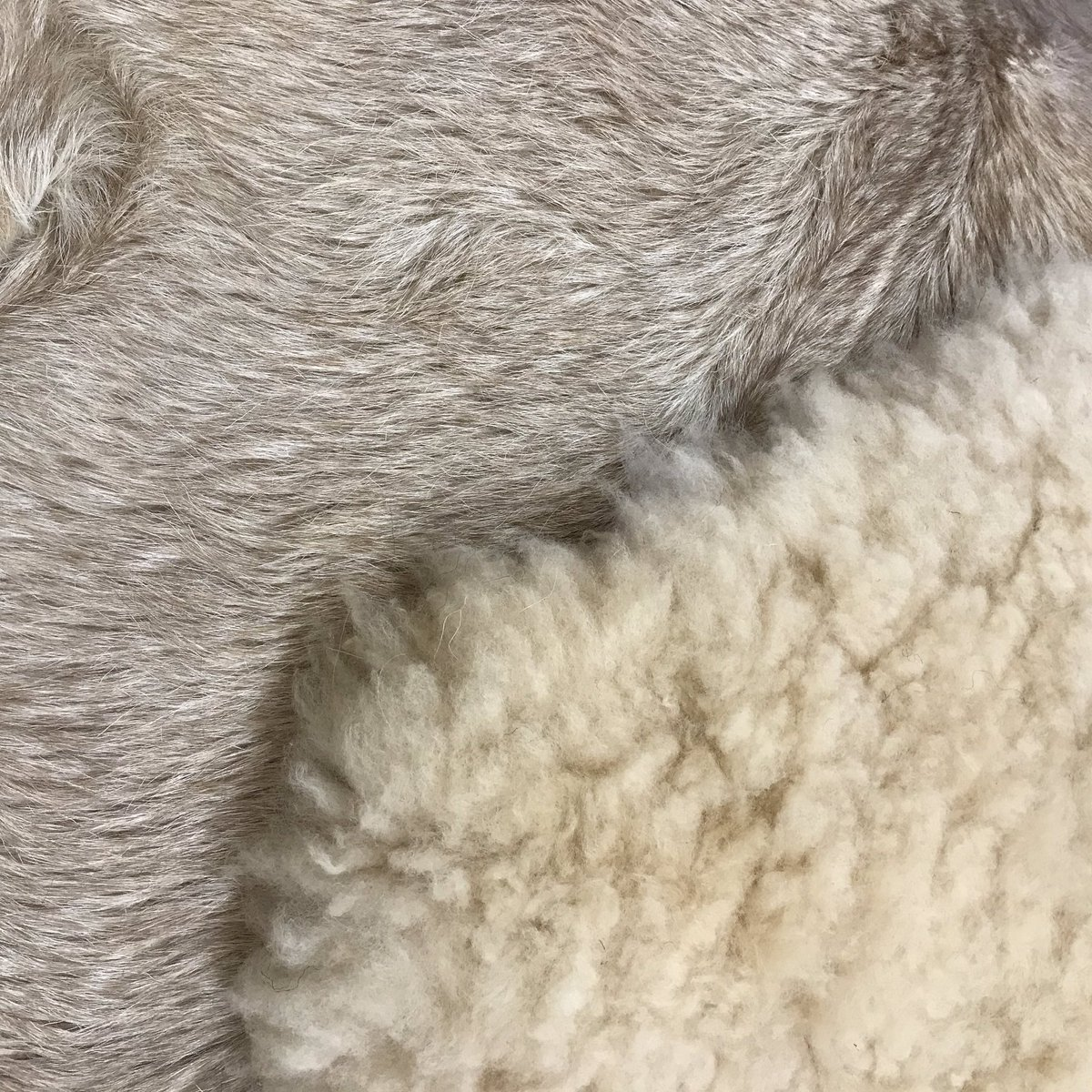 🌟🌟In support of @WelshRugbyUnion in the @rugbyworldcup we are posting a competition 🌟🌟 If the boys get to the semi finals we will be giving away a goatskin rug - if they get to the final we will be giving away a sheepskin rug!!! Got to be in it to win it 🏆 #RugbyWorldCup19