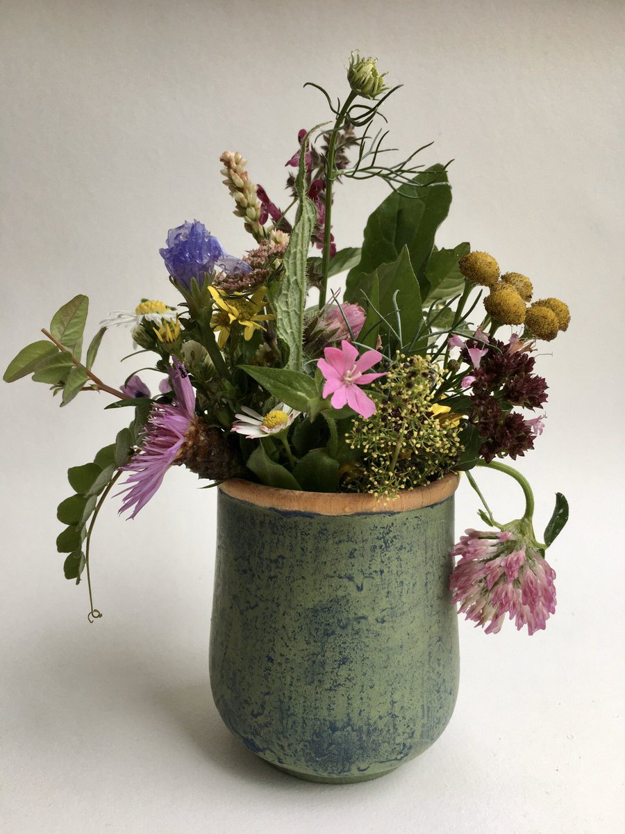 A tussie mussie of wildflowers picked from our meadow this afternoon. I counted 25 species still flowering 23 of which could spare a bloom, the other two, too precious to pick, Catchfly, I think, and a umbel of hogweed, silvery white like a firework in the gloom! #wildflowerhour <br>http://pic.twitter.com/dR3UOd8mKZ