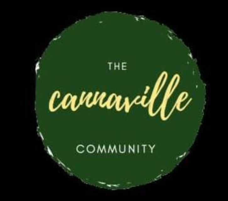 CannaVille has it all; intellectuals, creatives, writers, photographers, realtors, entrepreneurs, activists, doctors, nurses, parents, economists, lawyers, financial economists, engineers, just name it  so retweet and drop your handle for a follow if you're family #CannaVille<br>http://pic.twitter.com/lJ69JE5UN7