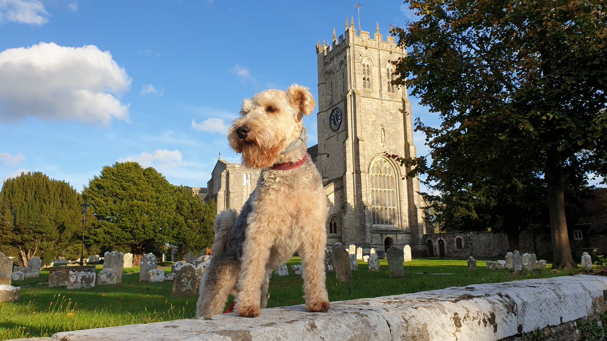 Woohoo! The sun came out so we visited Christchurch Priory and Quayside  <br>http://pic.twitter.com/zdwyzWNAna