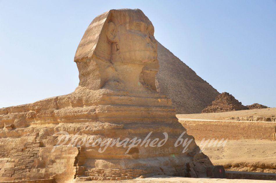 前回、世界一周クルーズに参加した時の写真です♪ 近々、さらに2周のクルーズ参加予定です 2回合計で約半年日本を離れるけど、 今回は身内が自宅を留守番してくれるので 安心して参加できます😆 #エジプト #スフィンクス #ピラミッド #旅 #クルーズ #世界一周 #旅 #海外旅行 #旅行記 #ツアー