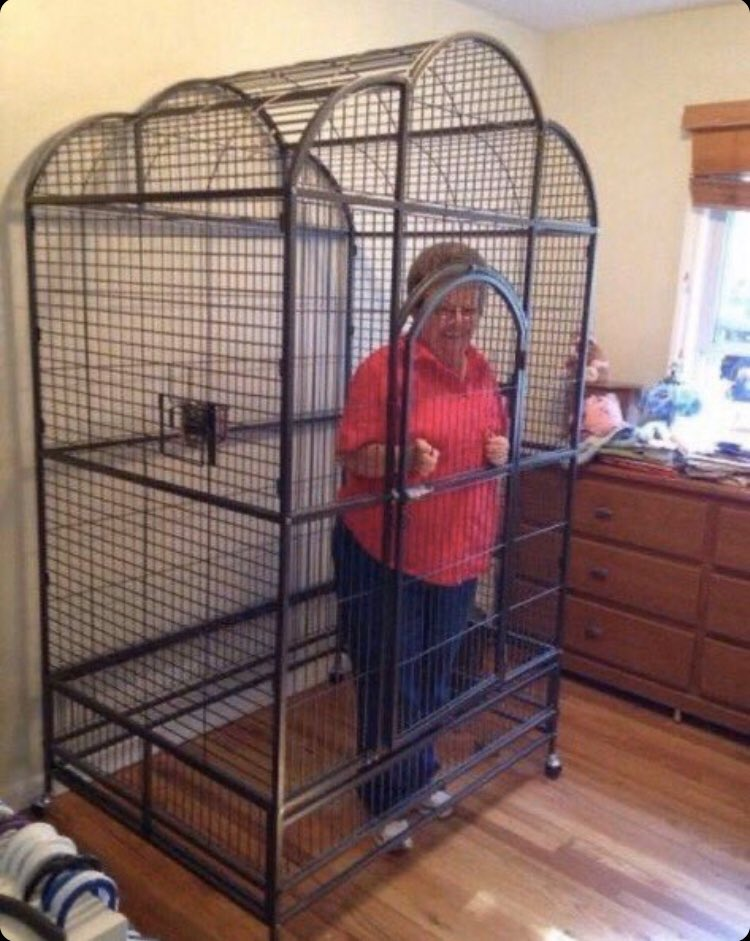 Not releasing my Nan until the fortnite get there shit together #Fortnite2