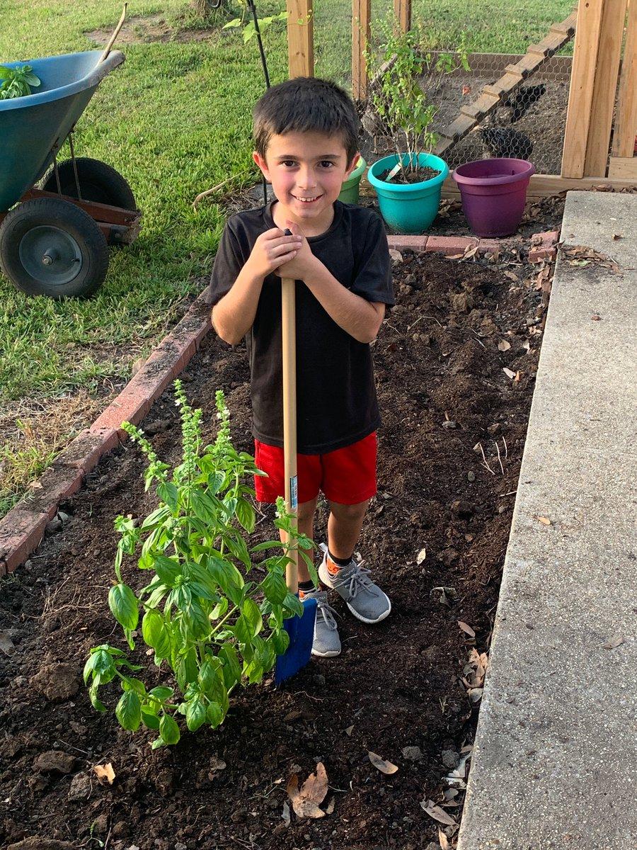 My dudes finished my herb garden!