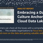 Image for the Tweet beginning: Data lakes keeping you up