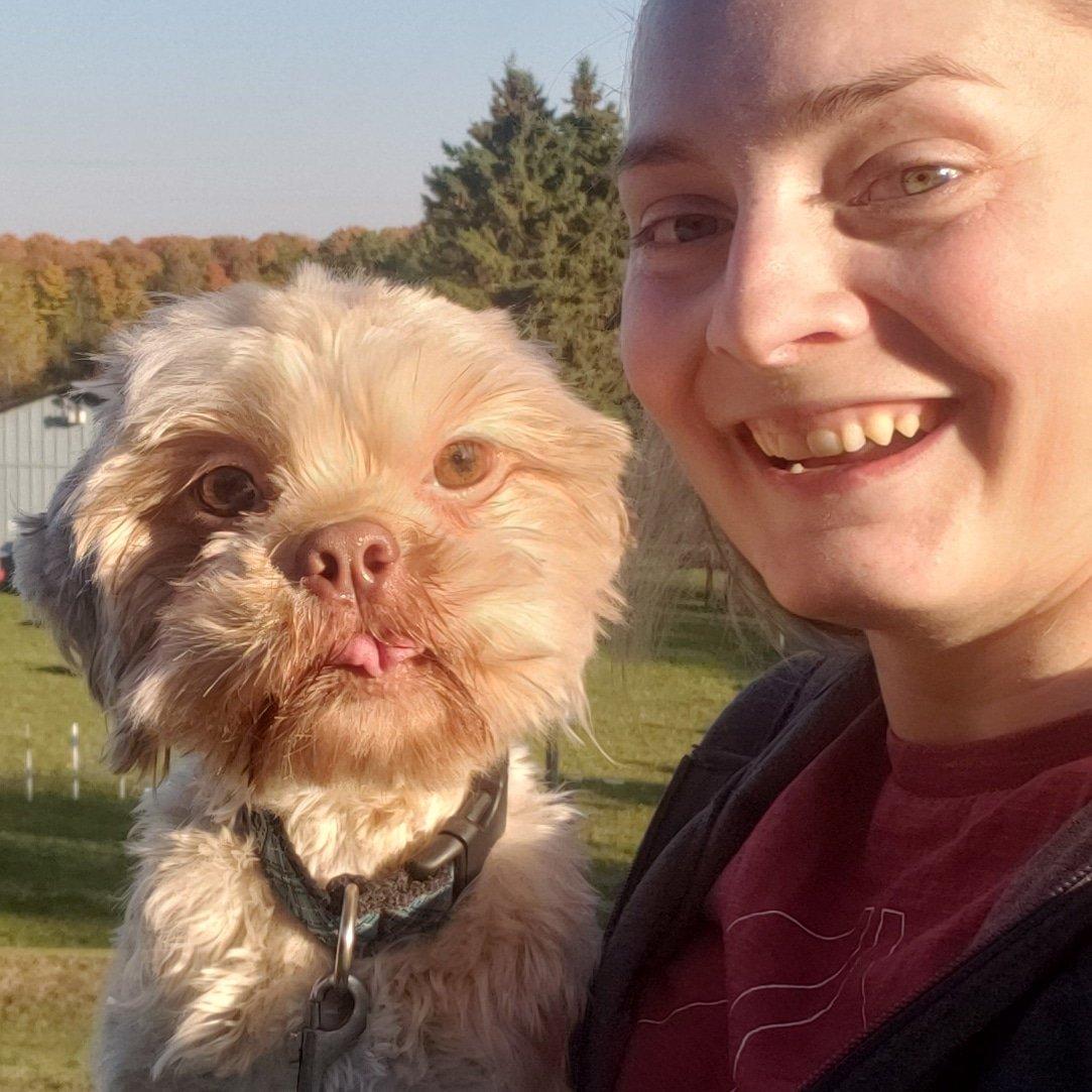 Oh Joey, what a #sillyface #dog #dogs #dogantics #dogface #funnydog #dogphoto #dogsarejoy #dogfun #dogsarethebestmedicine #doglooks #dogsarelove #dogsarethebest #dogpost #dogtonguepic.twitter.com/XU3PLf52et
