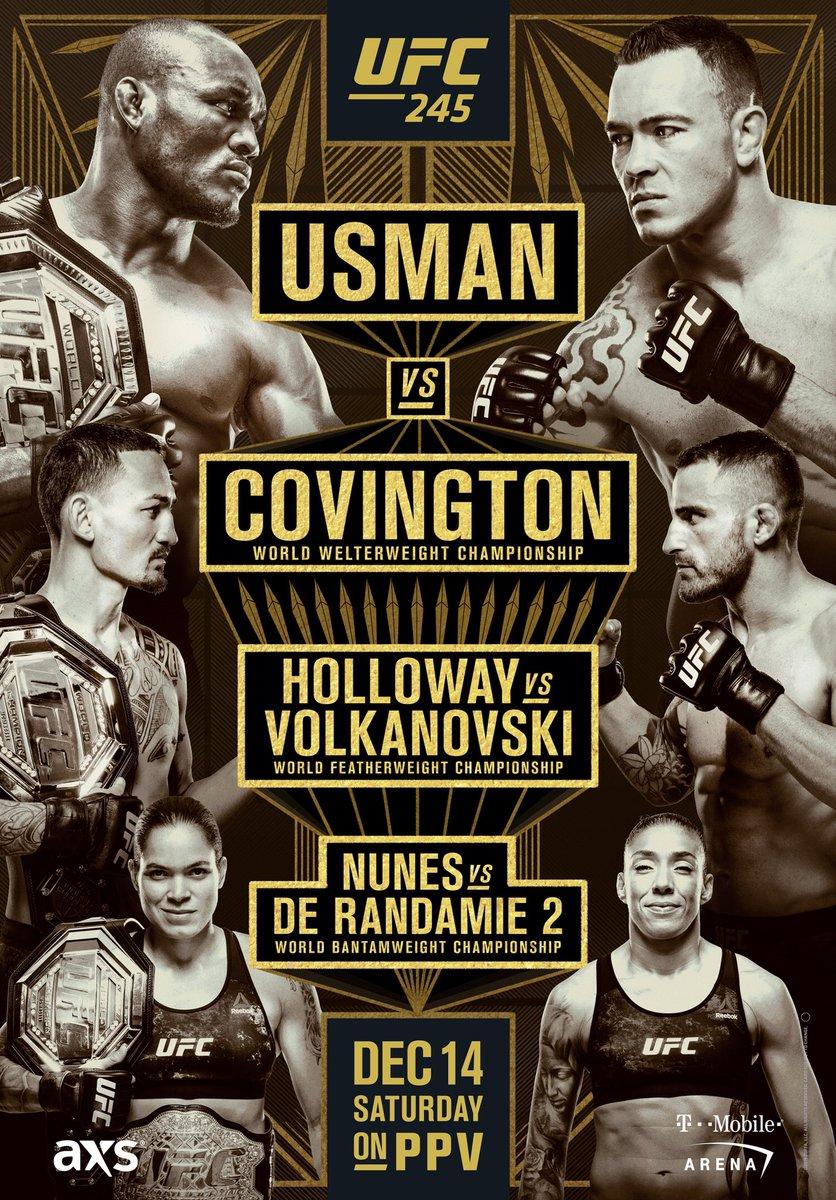 UFC 245 Usman vs Covington poster