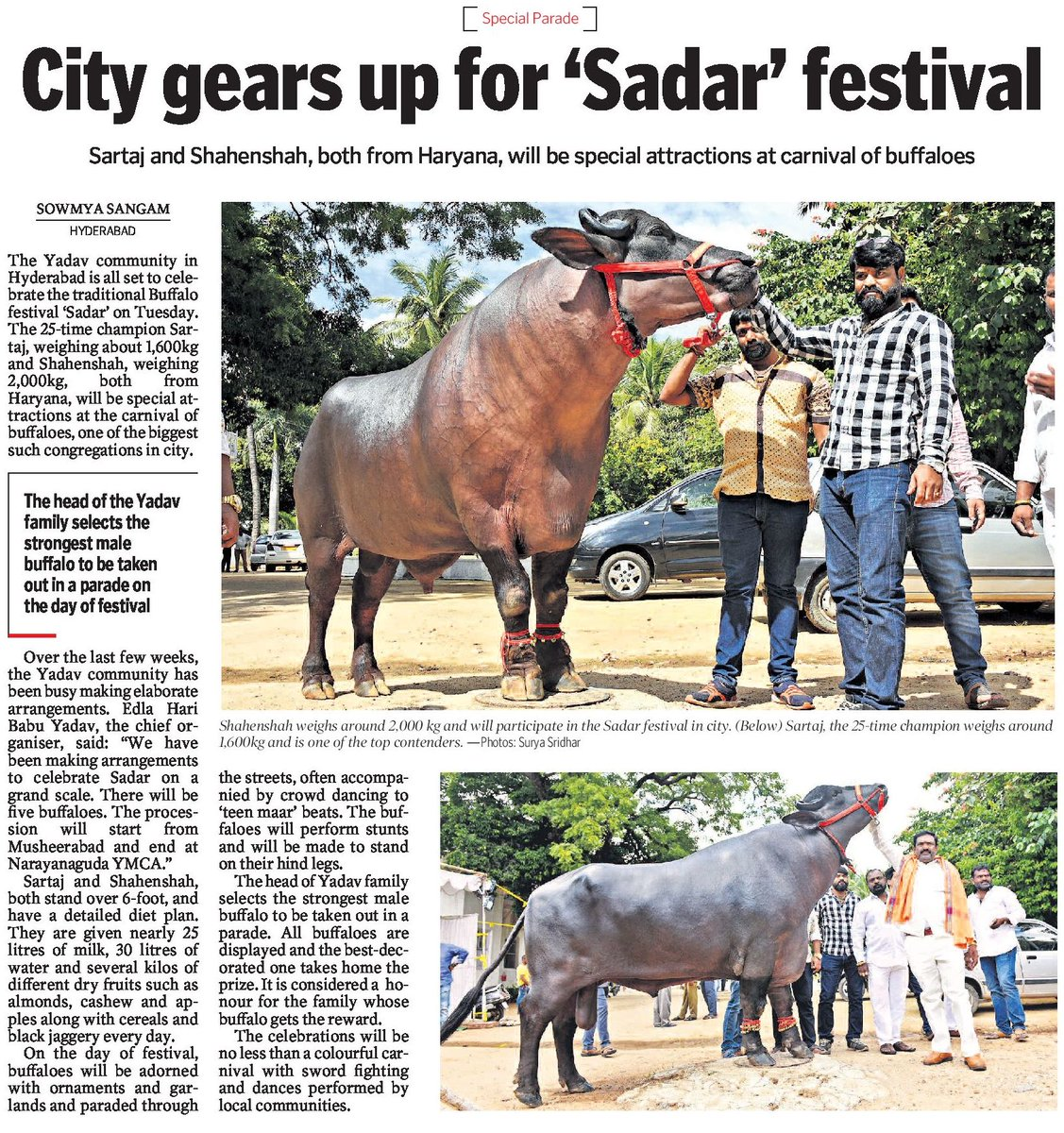 Sadar Buffalo Festival In Hyderabad