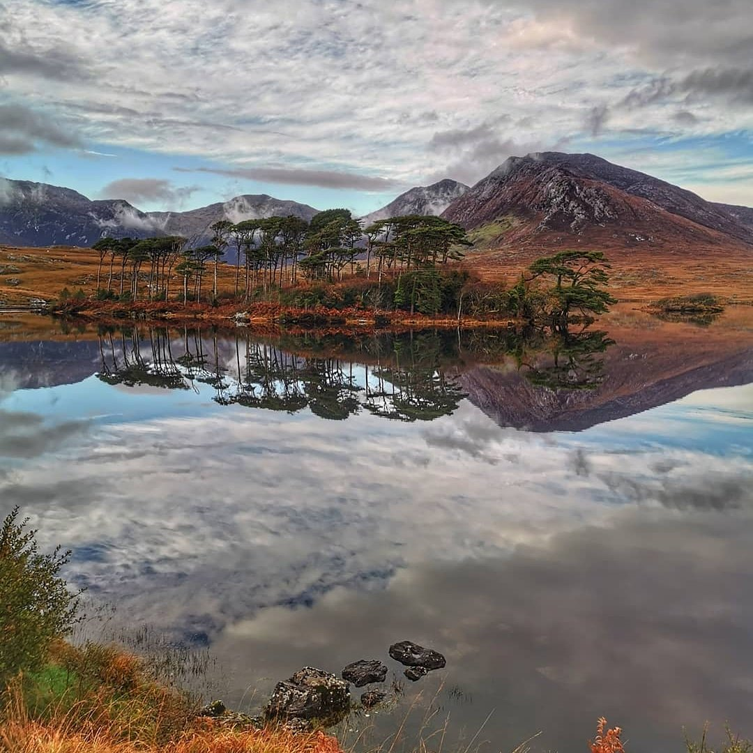 The picturesque #PineIsland in #Connemara with its autumn colours on...There is such a peaceful calm throughout Connemara, with the stillness of the lakes offering up some incredible #waterreflections! A beautiful capture by Brian Kelly!👌😍💕 #Galway #Ireland #VisitGalway