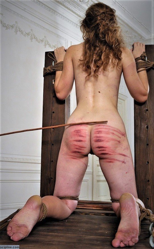 A complete guide to bdsm caning lascivity