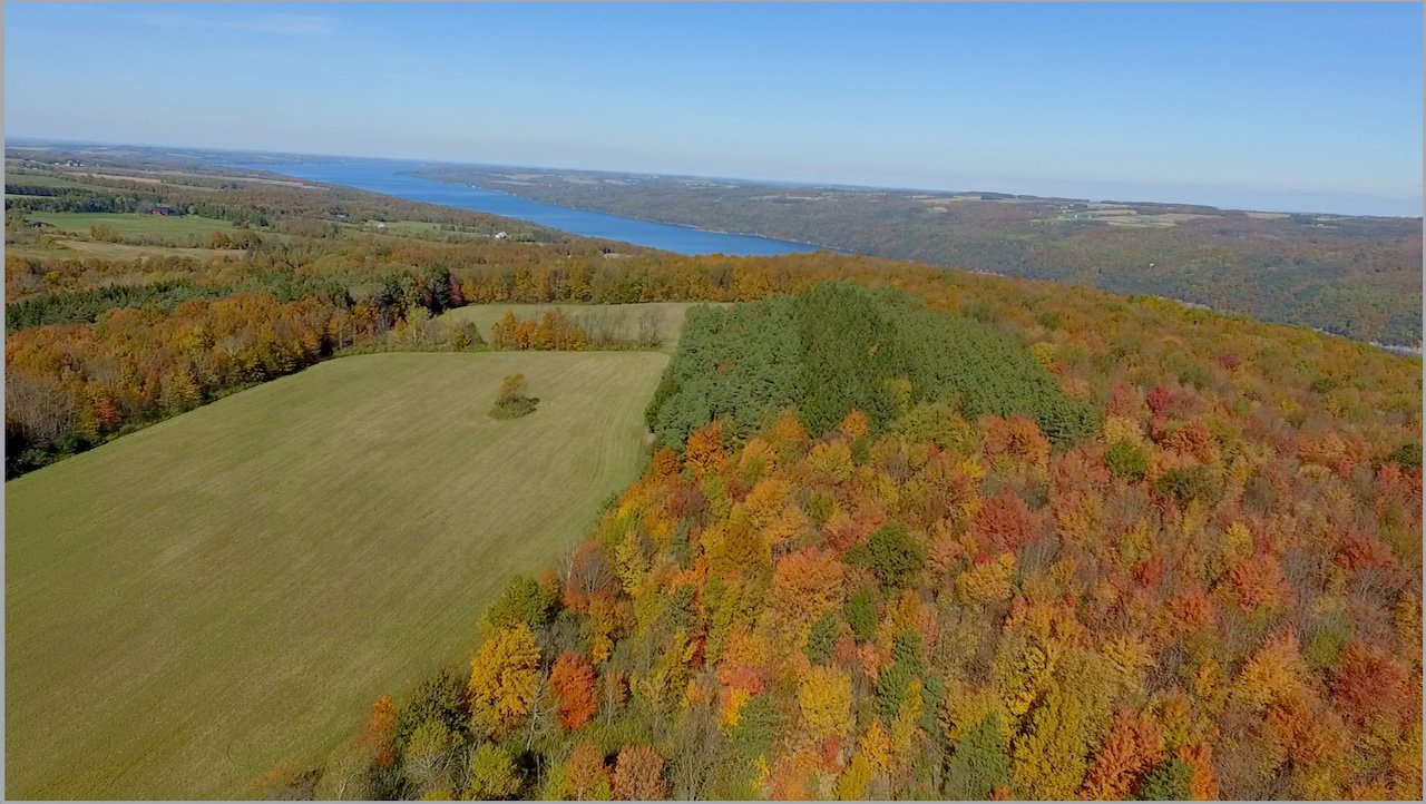 Skaneateles from the South (photo)