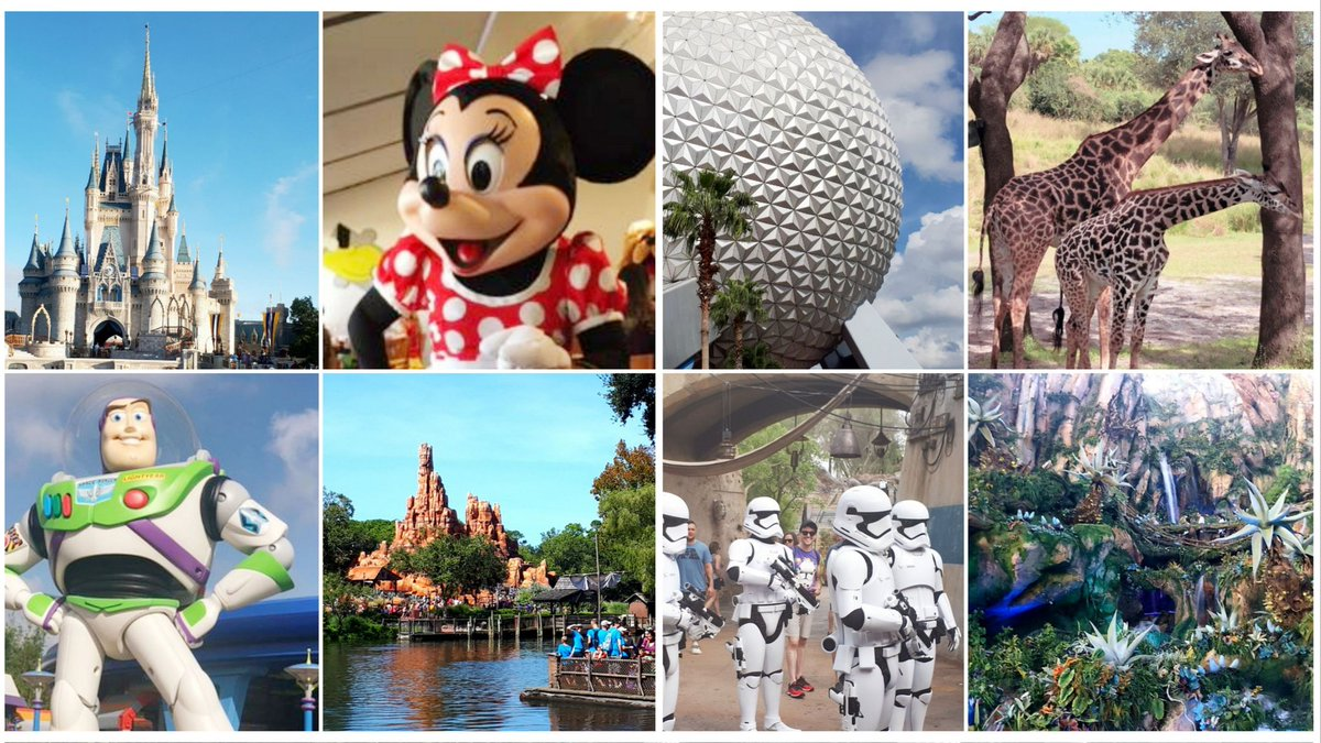 Wow, what a week @WaltDisneyWorld! Lots of fun with some amazing children, and we somehow managed to keep everyone out of hospital for the whole trip - must be the #DisneyMagic 😃 #WDW #MagicKingdom #AnimalKingdom #Epcot #HollywoodStudios #Florida #PaedsRocks
